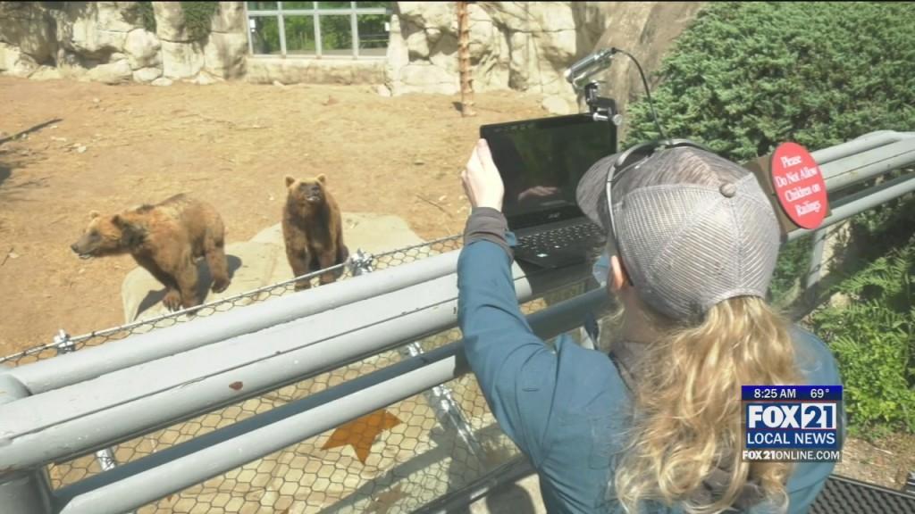 Lake Superior Zoo Fundraising