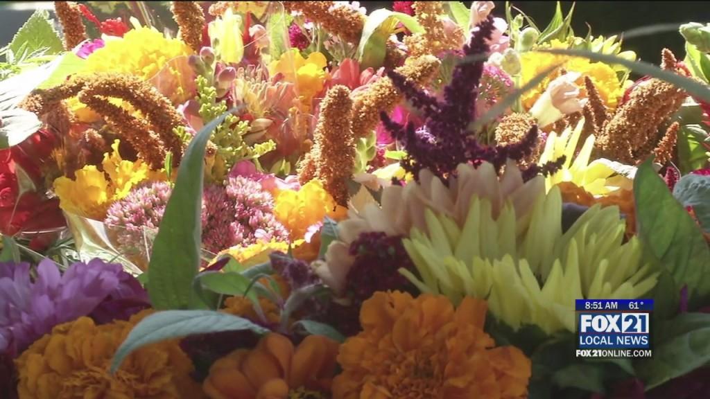 Lake Superior Harvest Festival