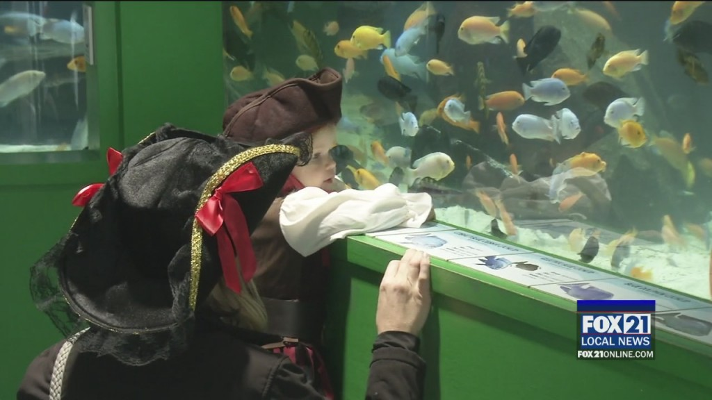 Scarium At The Aquarium