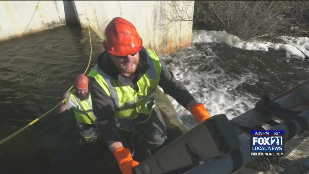 Pond Cleanup