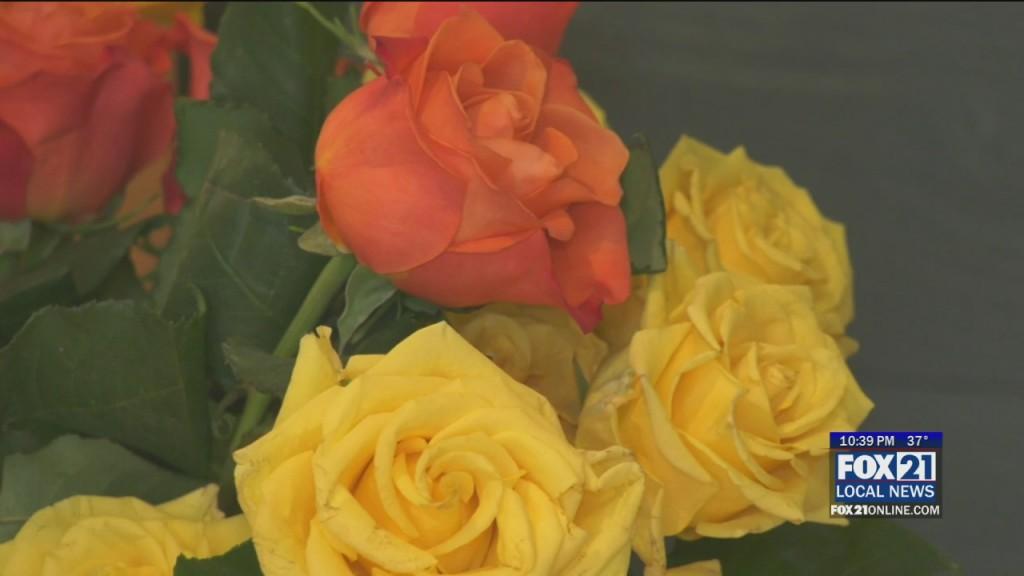 Flower Kindness