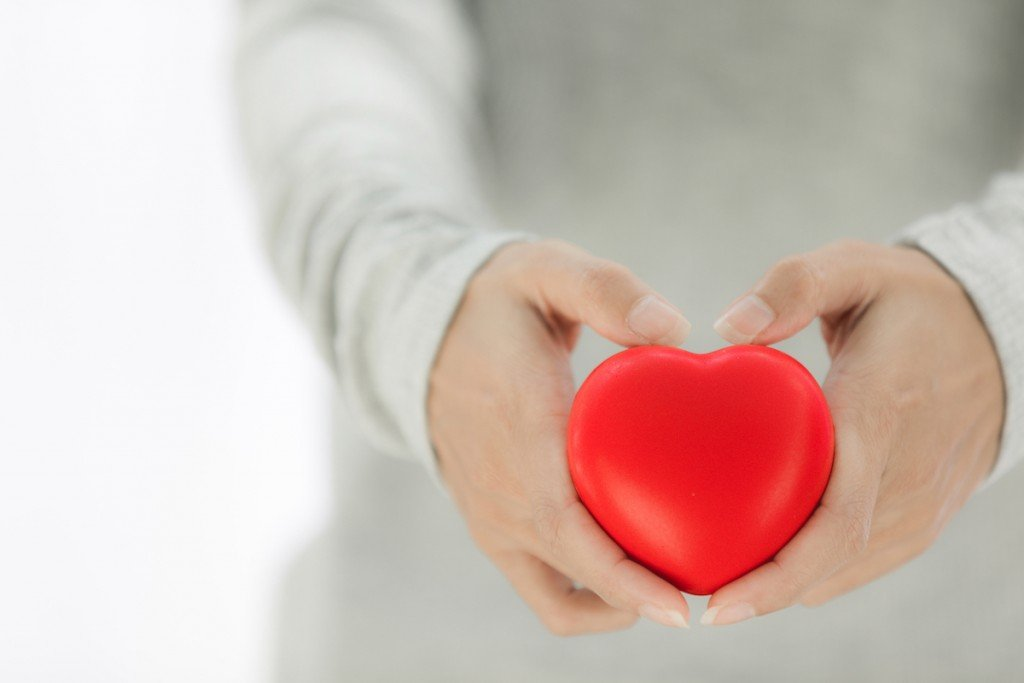 Female Hands Giving Red Heart, Heart In The Hands.