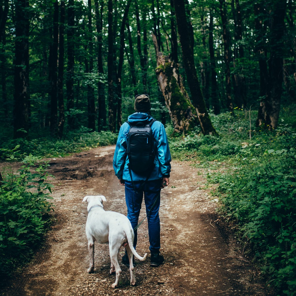 Man With A Dog In The Forest