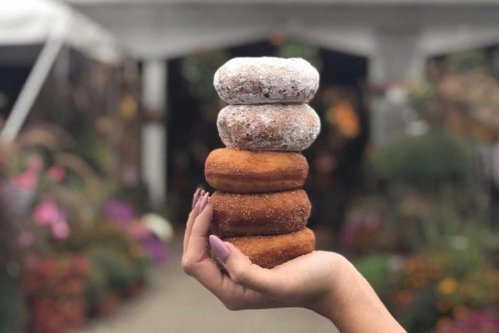 1 Donut Pass