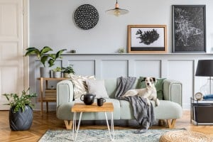 Stylish Interior Design Of Living Room With Modern Mint Sofa, Wooden Console, Furniture, Plant, Mock Up Poster Frame, Pdecoration , Elegant Accessories In Home Decor And Dog Lying On The Couch.