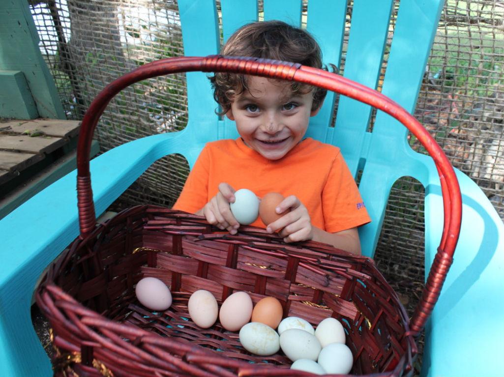 Boy holding eggs