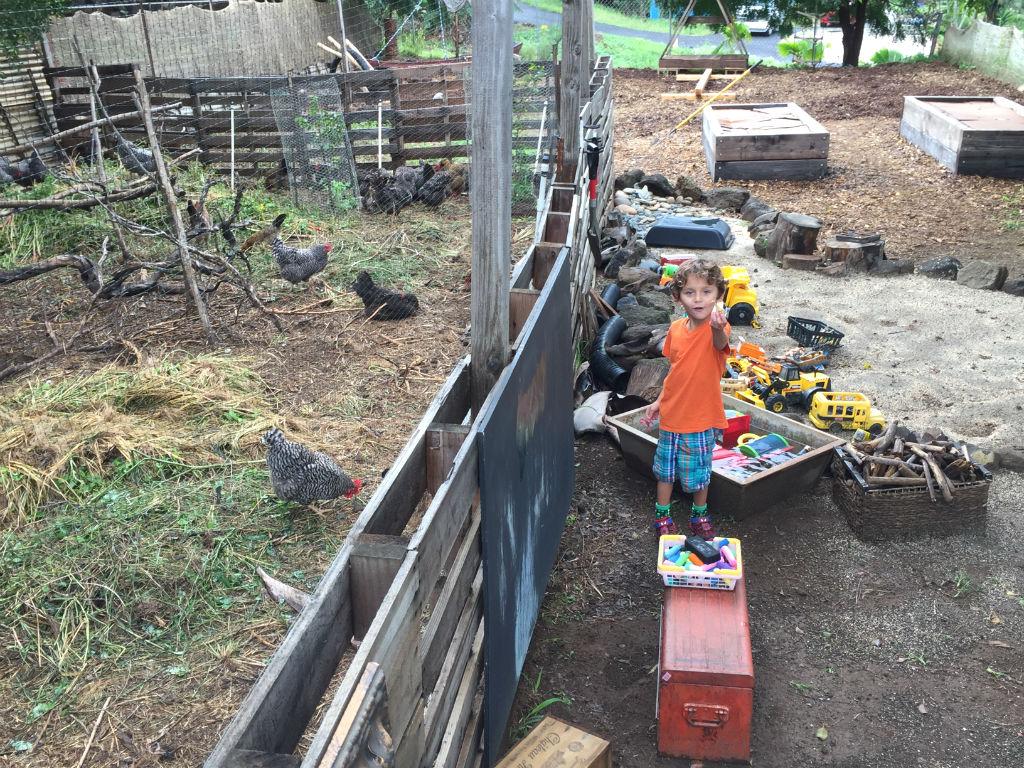 Boy standing near the chicken coop
