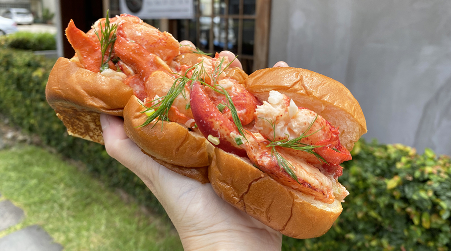 chunks of lobster meat flecked with dill sit on three toasted sweet rolls