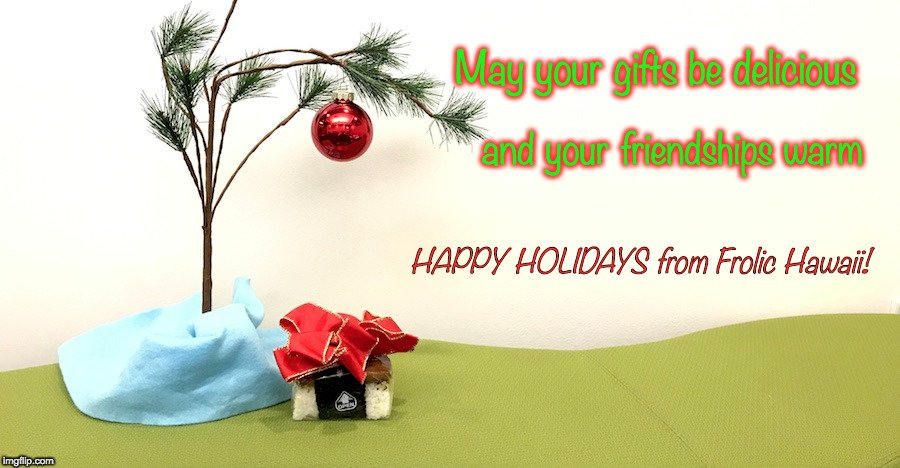 merry christmas from frolic