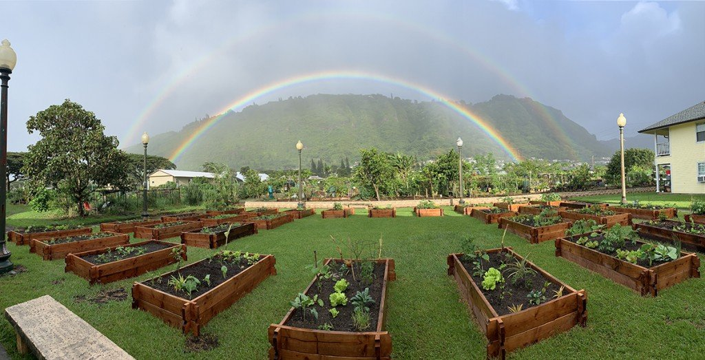 Manoa Garden Rainbow 1 1200px