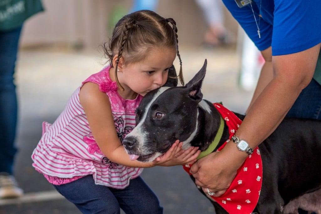 Hawaiian Humane Society Dog Kiss 1200