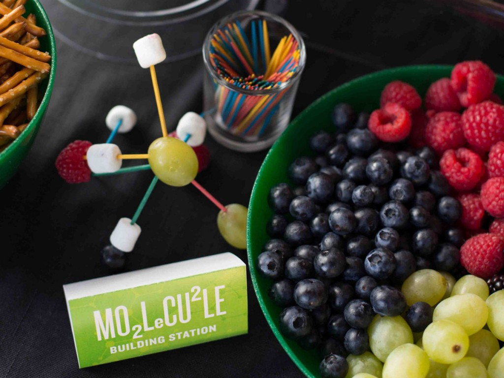 Make It Science Party Molecule Station Photo Karen Db Photography