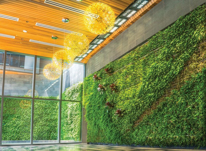Spaces Living Wall Ward Village