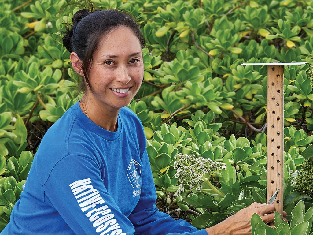 Entomologist Cynthia King Is Tasked With Protecting Hawaiis Biodiversity Cover
