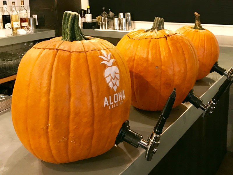 Splash Pumpkin Keg