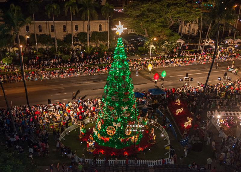 Honolulu City Lights Tree