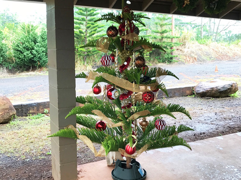 Christmas Tree Decorated