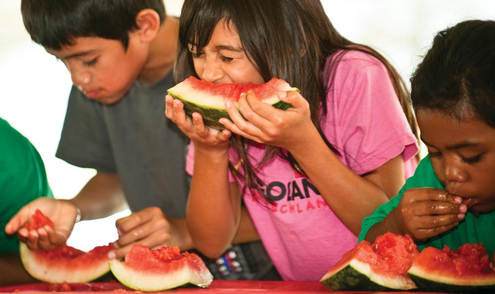 Getout Watermelon