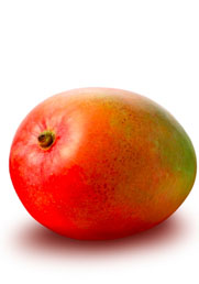 Mangoblog2