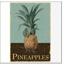 Pineapple1nl