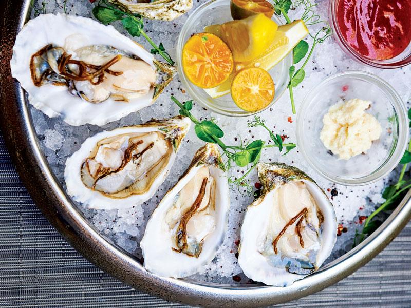 Dukes Lane Oysters