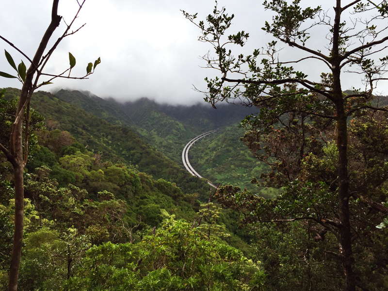 Hike Of The Month Aiea Loop View