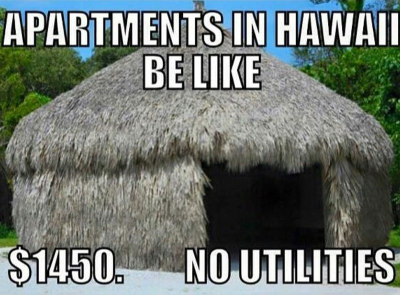 Hawaii Memes Rent