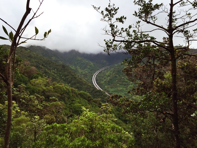 Aiea Loop Trail