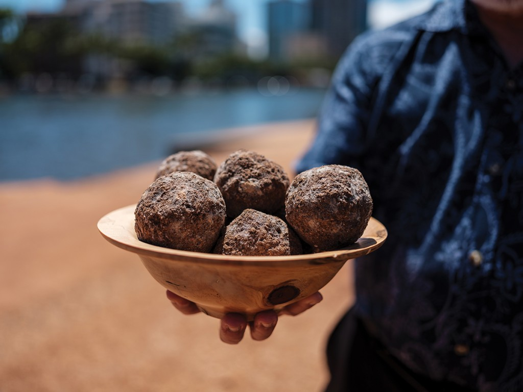 Can These Muddy Looking Balls Make The Ala Wai Swimmable Cover