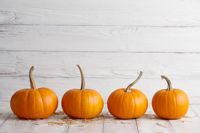 Stylelist Pumpkin Scrub