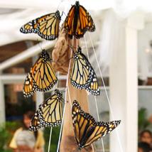 Butterflyth