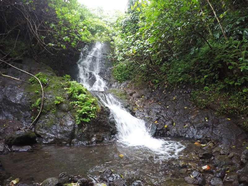 Hike Of The Month Likeke Falls Waterfall