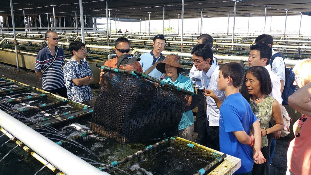 Nelha Tour Aquaculture Bia