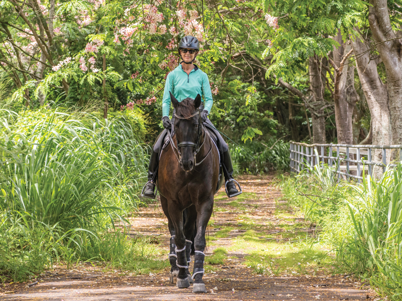 Best Of Services Horseback Riding