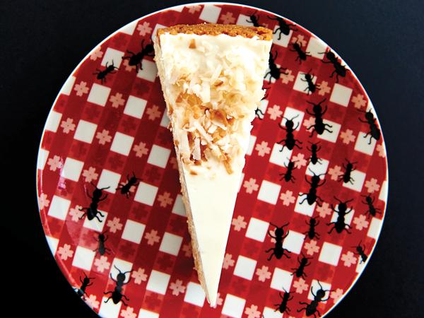 Splash Cheesecake