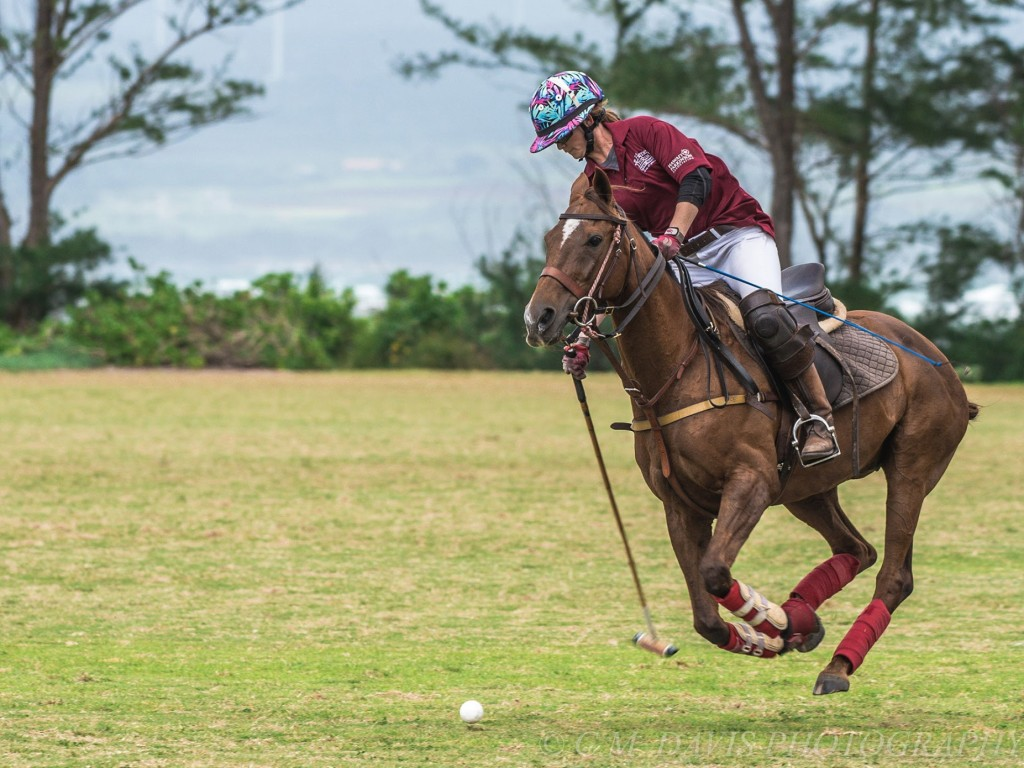 Your Guide To The Perfect Weekend In Honolulu Polo North Shore Cover