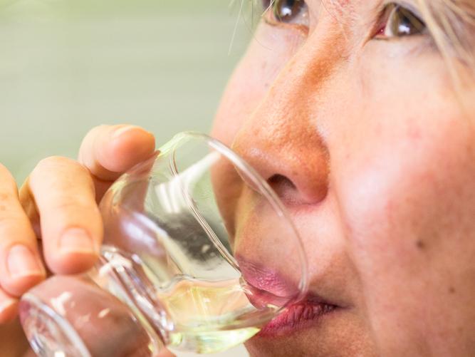 Sake Splash