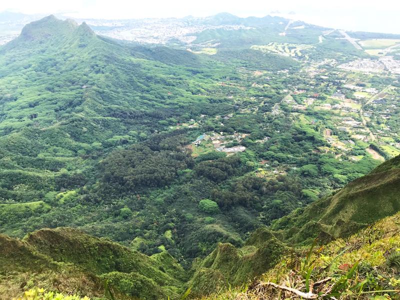 Oahu Hike Wiliwilinui Ridge View