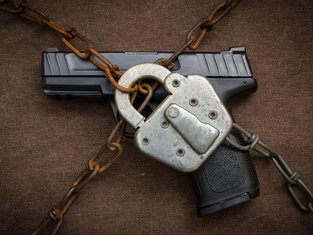 Hawaii Gun Locked