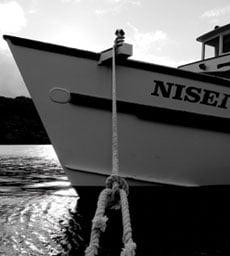 Nisei003 1