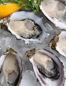 Oystersvert
