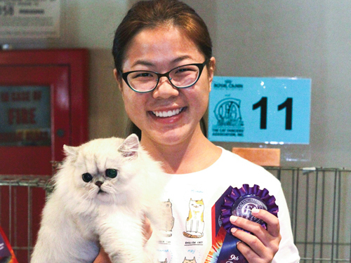 Field Notes Cat Show Award Winner Preview