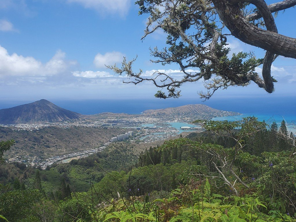 We Tried It What Its Like At These 6 Popular Oahu Hikes And Gardens During The Pandemic Kuliouou Ridge Cover