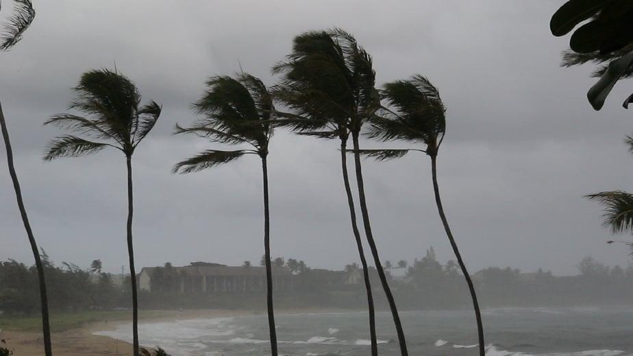 Hawaii Dcca Hurricane Insurance