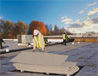 98x76roofboards
