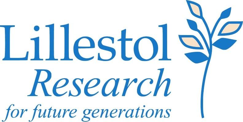 Lillestol Logo Print