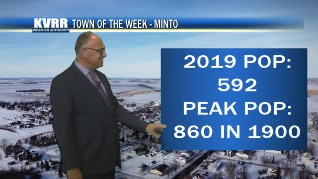 Minto Totw