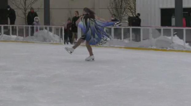 Skating Show