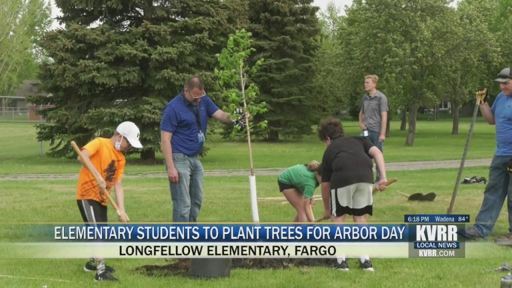 Longfellow Trees