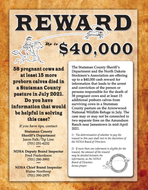 ,000 reward offered for information about mysterious cattle deaths